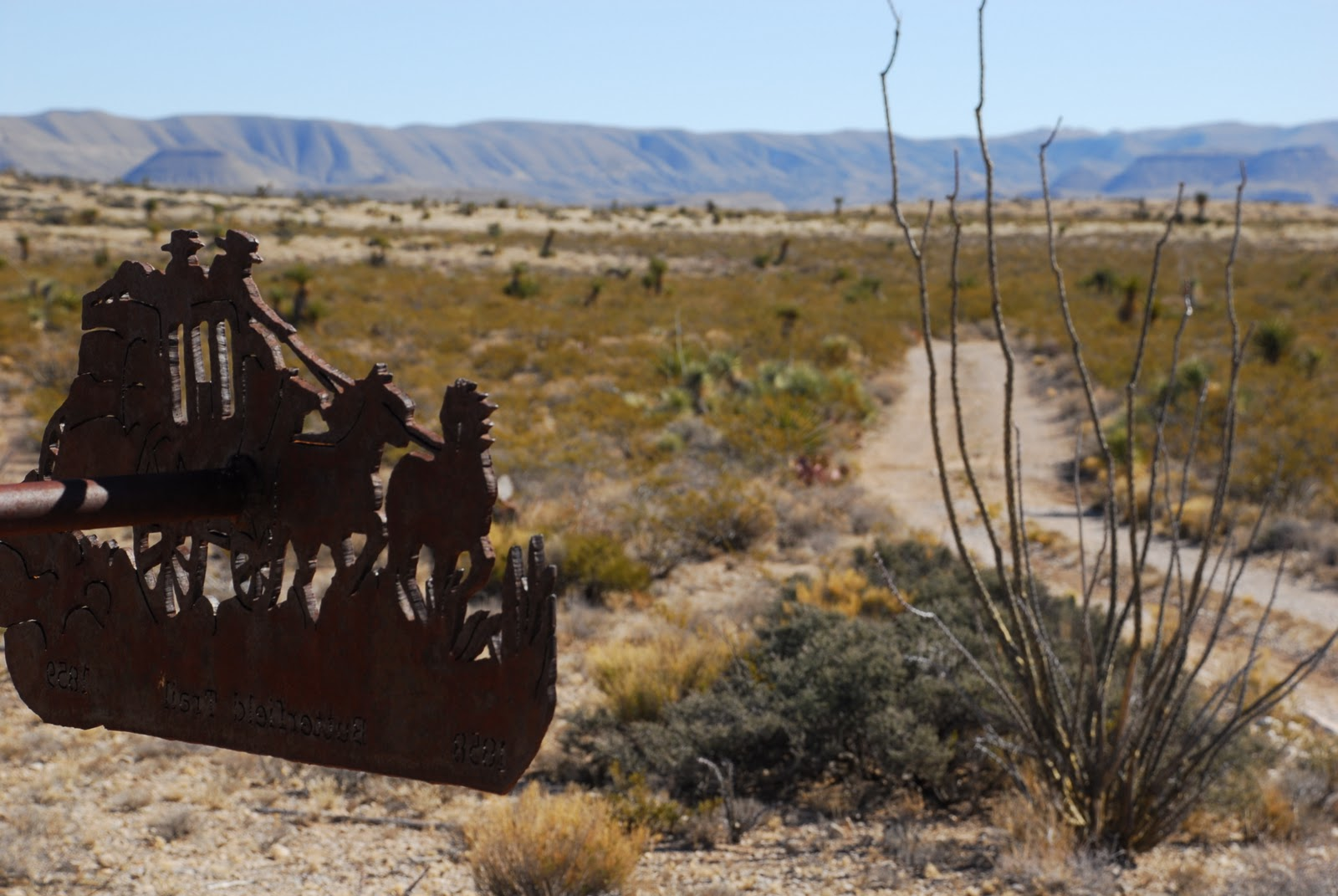 Guadalupe Mountains National Park was the site of the historic first meeting of eastern-bound and western-bound Butterfield Overland stagecoach delivering the mail cross-country in 1859. This photo was taken near that spot on the Williams Ranch Road in the western stretch of the park.