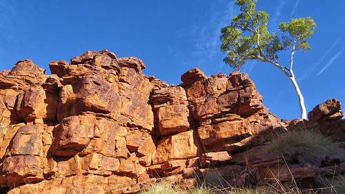 023 Trephina Gorge, East MacDonnell Ranges