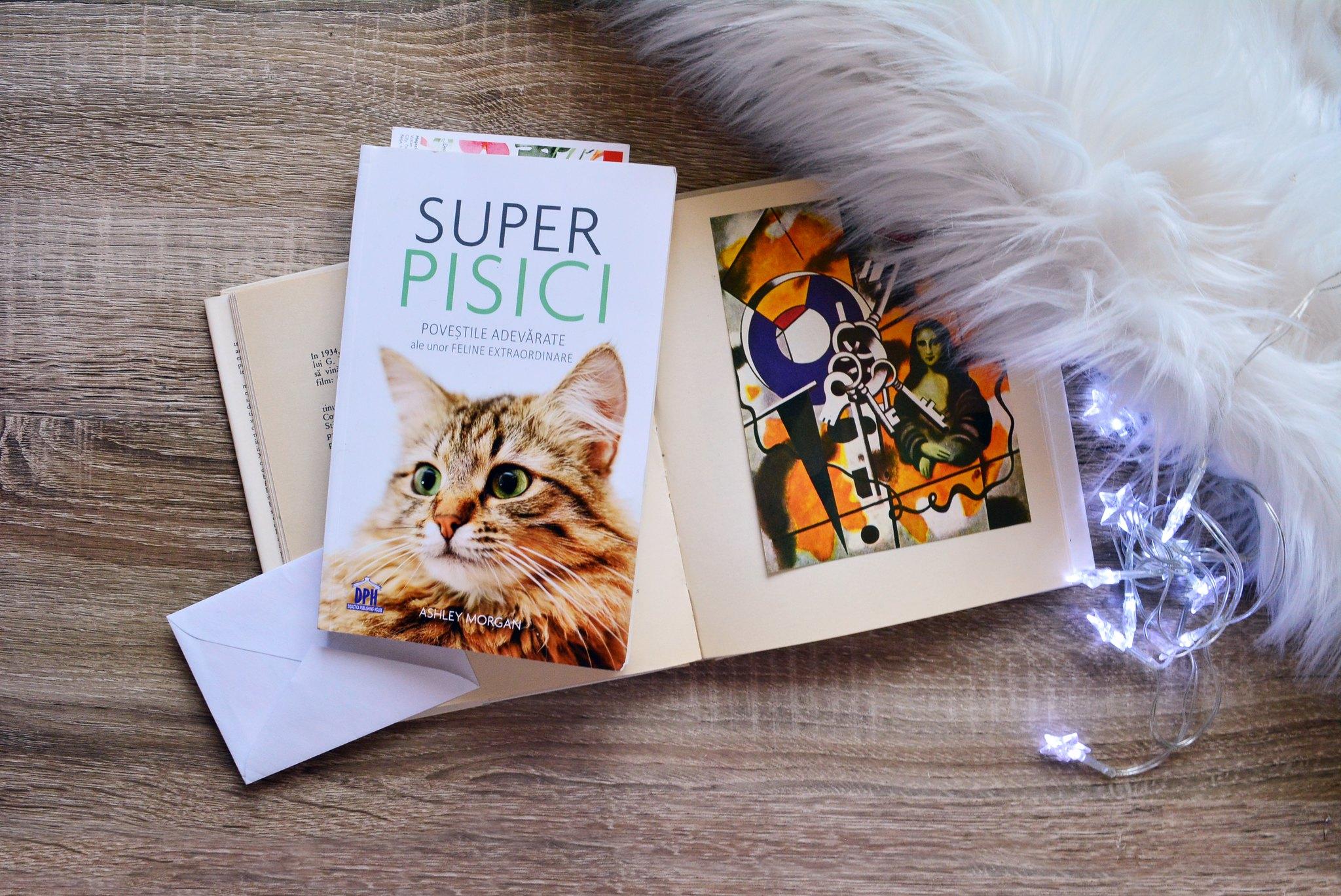 Super Pisici
