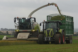 Claas Jaguar 970 SPFH filling a Broughan Engineering Mega HiSpeed Trailer drawn by a Claas Arion 640 Tractor