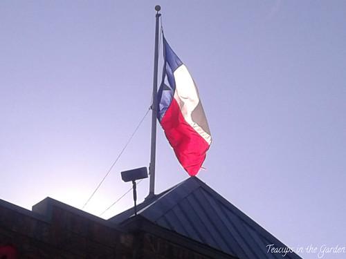 Texas Flag 1