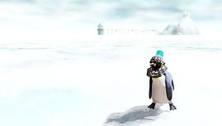 Pingu Olympics Portrait