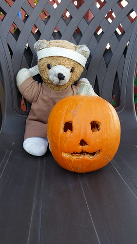 A Bear and His Pumpkin