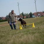 Hundesportferien 2018