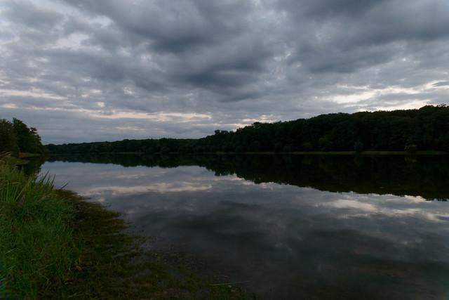 L'étang de Pirot en forêt de Tronçais