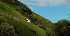 Tann (Haut-Rhin, Fr)