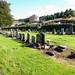 Port Glasgow Cemetery Woodhill (56)