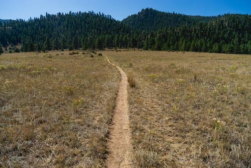 Poudre Canyon Trail