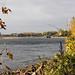 Herbst am Rhein / Monheim by KL57Foto