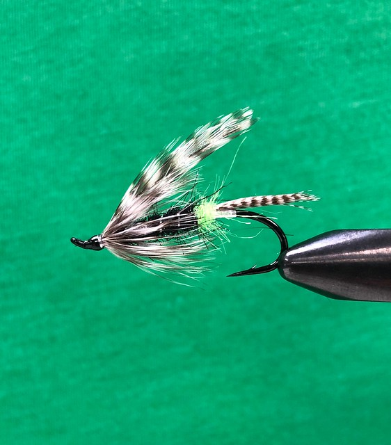 Willamette river steelhead flies