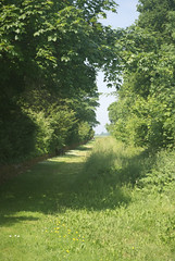 Chemin de ronde Sud, Fort de la Malmaison