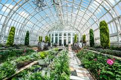Sunken Garden, Como Conservatory, St. Paul 9/10/18 #comozoo