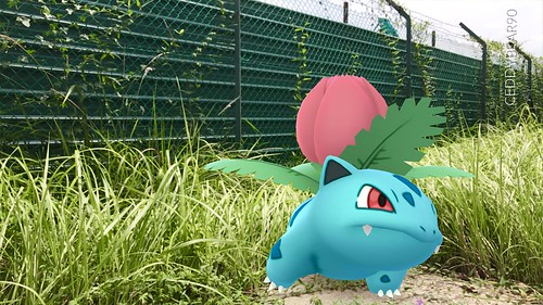 002 Ivysaur (position=right)