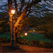 Avenham Lamps