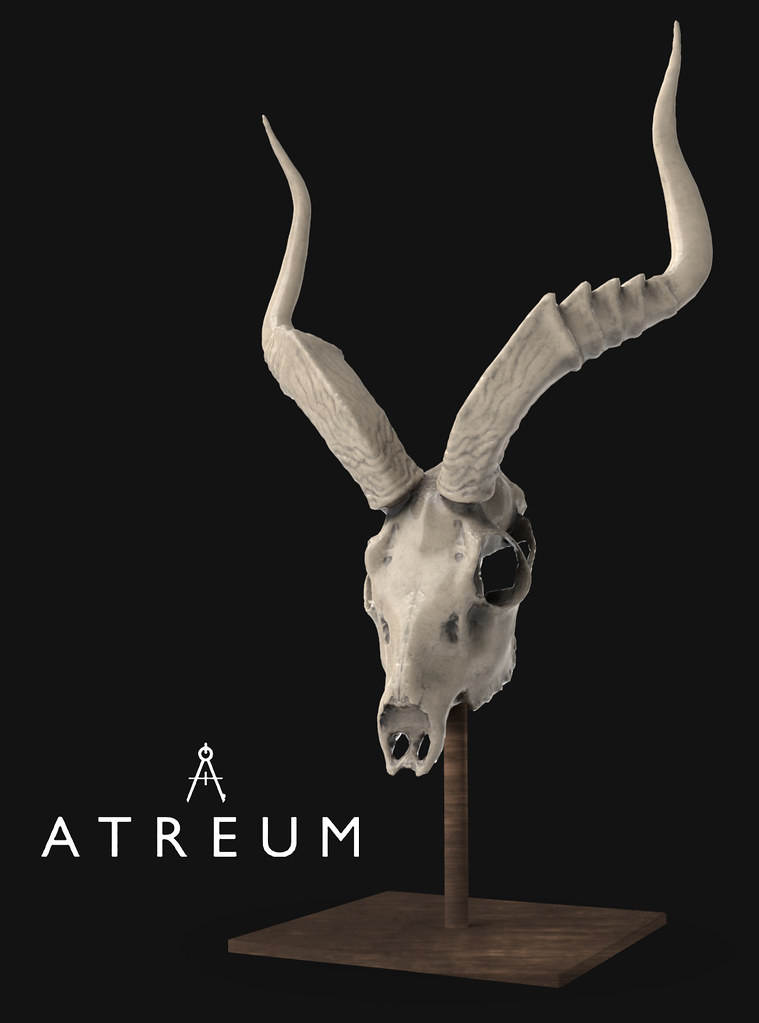 Atreum – Skull Sculpture