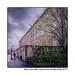 Harris-Court-Mills,-Great-Horton,-Bradford-(UK)-2015-iii