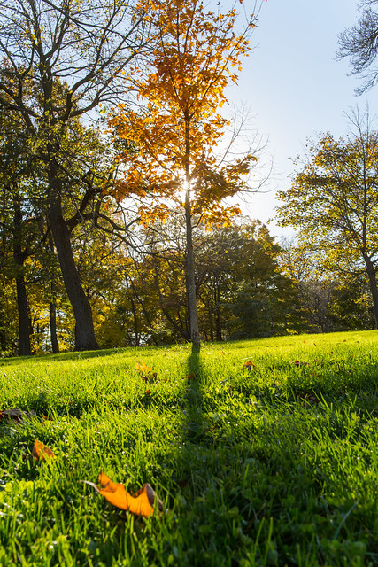 Fall Lake Park