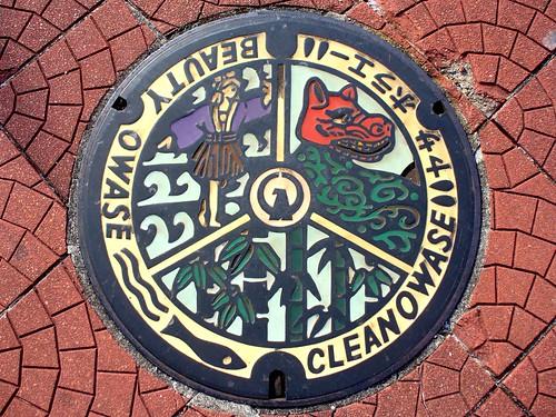 Owase Mie, manhole cover (三重県尾鷲市のマンホール)