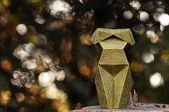 Origami- Makoto Yamaguchi