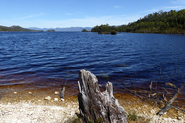 Am Lake Pedder, Panasonic DMC-TZ61