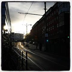 Passar på att glädjas åt motljuset. Åker jag tillräckligt sent ser jag fortfarande solen på morgonen. :sunrise: