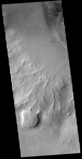 Crater rim gullies in Noachis (THEMIS_IOTD_20181210)
