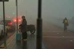 more fog :)