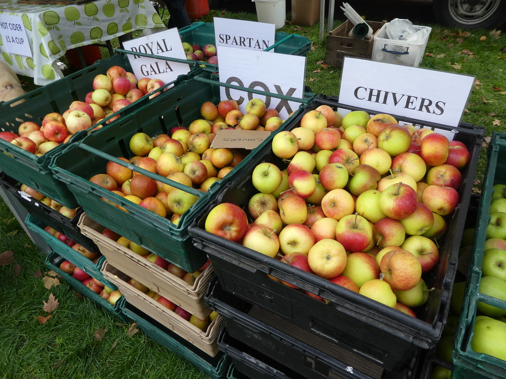 Apple Festival, Palace Green, Ely