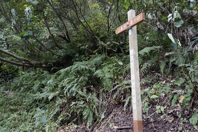 牛岳アタック! その2 三段ノ滝から二本杉へ