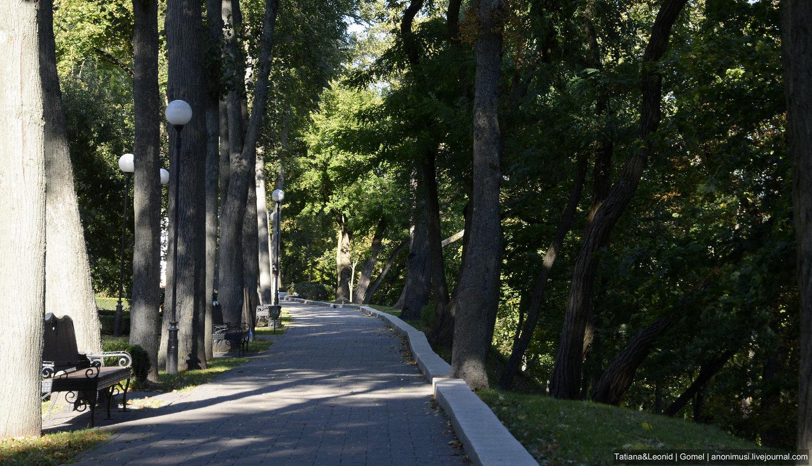 Гомельский парк. Октябрь