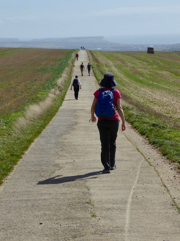 On the downs Lewes to Saltdean walk