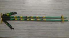 Hůlky LINE pin 95cm - titulní fotka