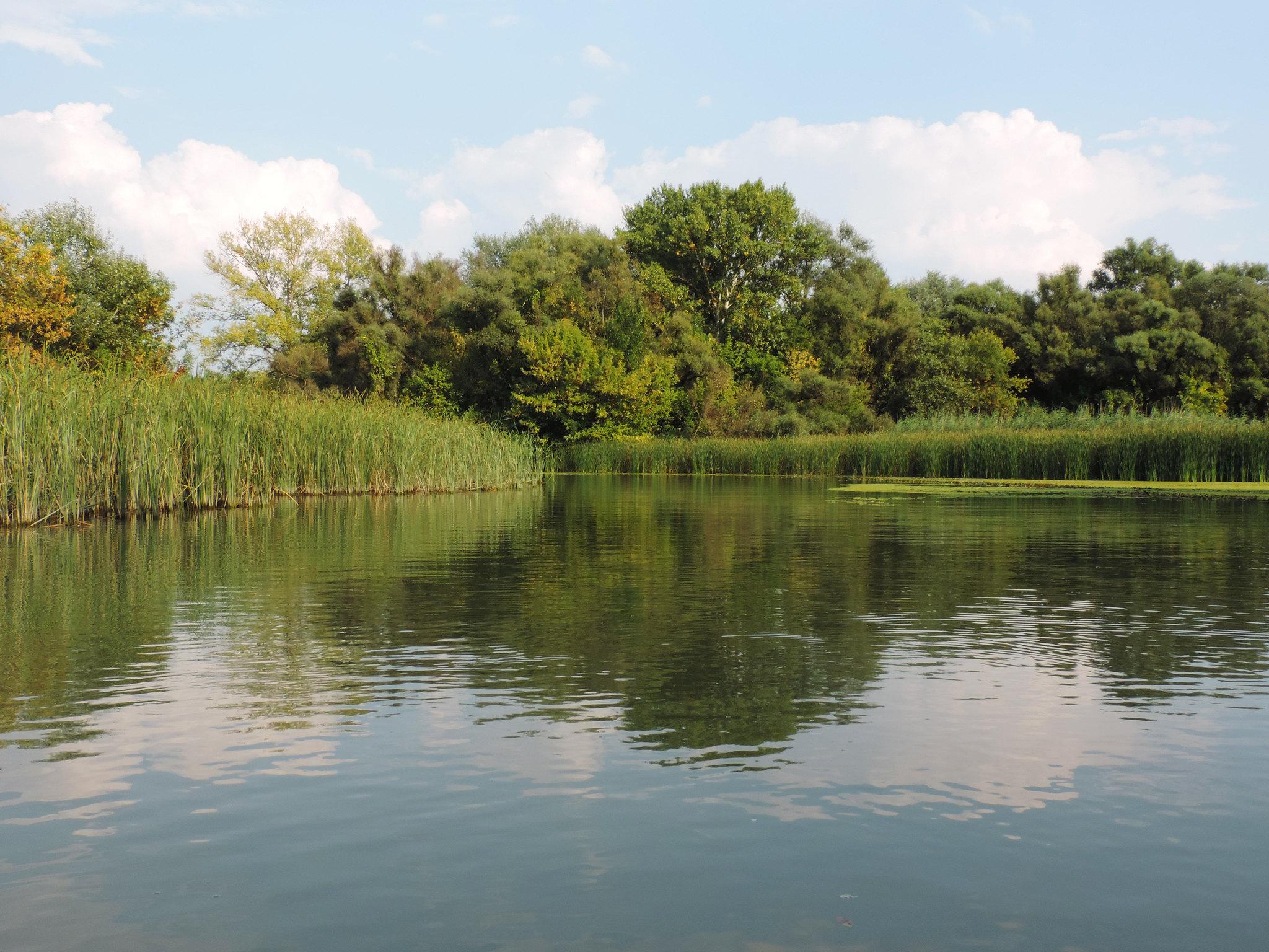 Lake Tisza, Hortobágy National Park, Hungary