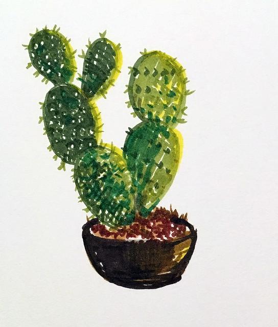 181007 cactus illo