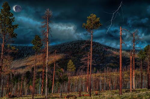 Escondilla Lookout, White Mountains, Arizona