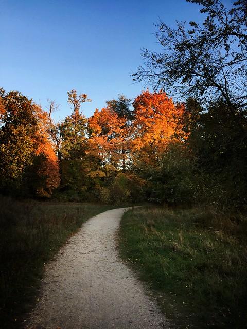 Oktober in Stein