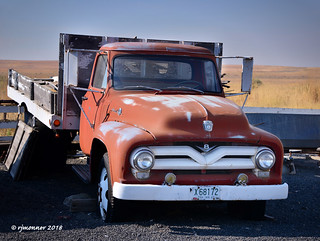 Fifties Ford_188095