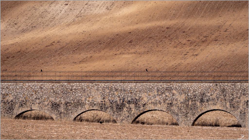 Aqueducs de la Vanne 2 45515504952_ea446d19a5_b