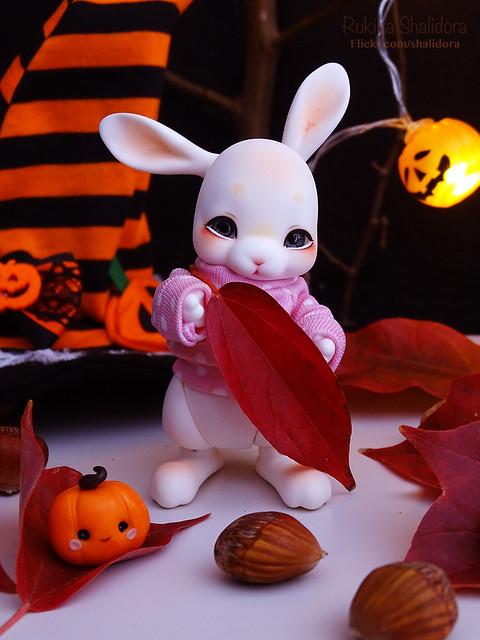 Rukiya's Dolls MAJ 14/10 ~Happy Halloween !~ p33 - Page 31 45651737241_8930a6601b_z