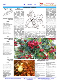 Октябрь 2018г. №7(118) стр.6