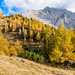 Colorful autumn morning in the mountains. Colourful autumn morning in mountain lake. Colorful autumn landscape. by franco nadalin