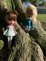 Photo shoot at the park