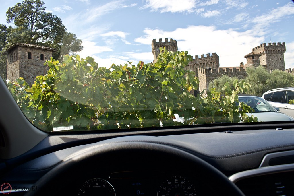 castello-di-amorosa-peaking-out-from-the-bushes