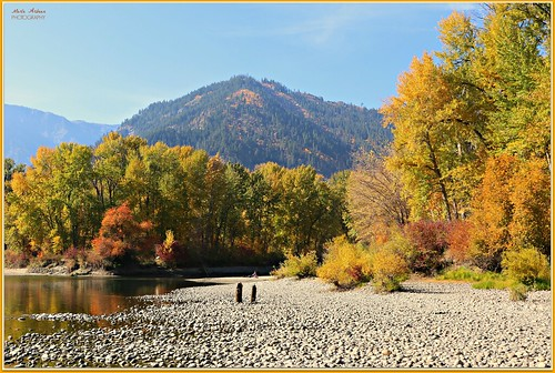 fall colors fallcolors autumn leaves trees mountains cascademountains wenatcheeriver waterfrontpark leavenworth washington canon picmonkey