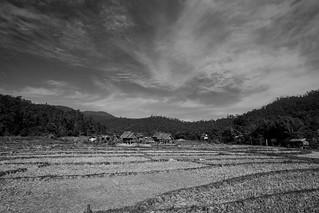 Rice farming village near the Boon Ko Ku son Bridge in Pai, Thailand