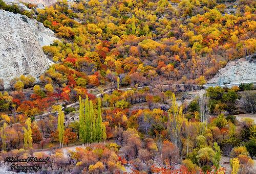 Autumn in Nagar