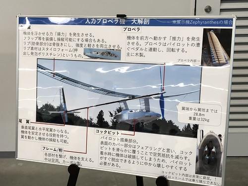 名古屋大学 人力飛行機 制作サークル AirCraft Zephyranthes 機体概要 IMG_0984