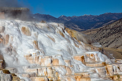 Canary Spring at Mammoth Hot Springs - Yellowstone National Park
