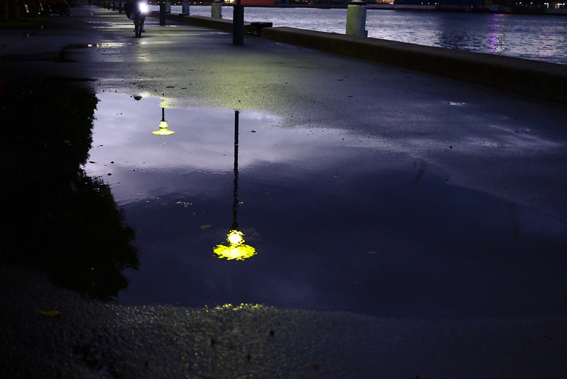 Street lights reflected