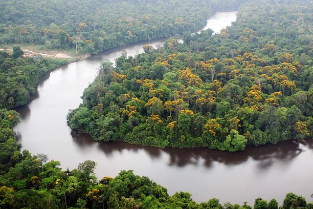 Bolsonaro apresenta uma ideia retrógrada e atrasada sobre a maior floresta tropical do mundo - Créditos: Divulgação/Ministério do Meio Ambiente
